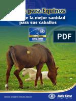 SANIDAD_EQUINA_DIPTICO
