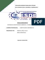 SISTEMAS DE GESTIÓN MEDIO AMBIENTAL Y NORMATIVA ISO-14000