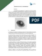 Modulo 01 - Epidemiología de La Enfermedad 1