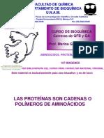 1, Aminoacidos. Proteinas, Estructura