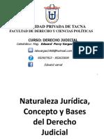 00 Naturaleza Jurídica Del Der Judicial