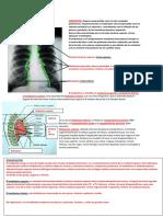 Anatomia Mediastino