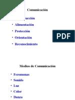 Clase 13 Comunicacion