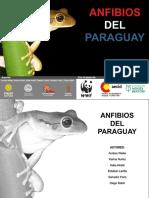 Weiler2013AnfibiosdelParaguay.pdf