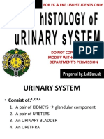 K-2 Histology of urinary system 2017.ppsx