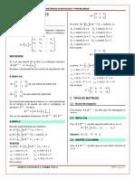 011 Matrices y Determinantes (1)