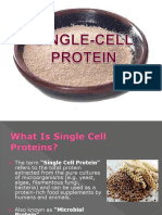 7_bp Khaswar_single Cell Protein and Its Application
