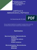 C3.Amino Acids and Peptides