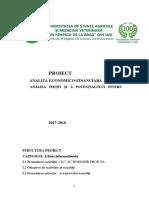 proiect analiza