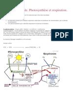 Photosynthèse Et Respiration.