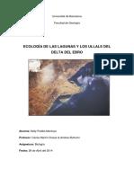 Informe delta del ebro.docx