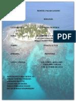 239206105-INFORME-DE-ECOSISTEMAS-docx.docx