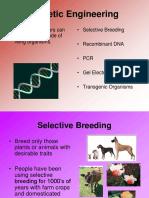 Rekayasa Genetika_1