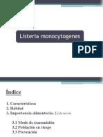 Listeriamonocitogenes 151102215516 Lva1 App6891