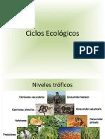 Unidad 4. Biomas.pdf