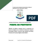 Proyecto Gallina Campera Practicantes Proyectistas