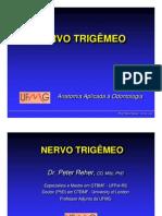 nervo trigêmeo