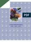 1-cursodebisuteria-instruccionesbasicas-110615041030-phpapp01 (1).pdf
