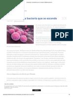 Chlamydia, Una Bacteria Que Se Esconde _ MiSistemaInmune