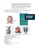 protocolo_enfermeria_quirofano_tiroidectomia.pdf