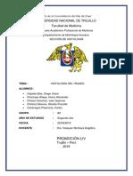 Histología Del Hígadop