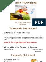 Valoración Nutricional 2