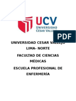 332544663-PAE-Salud-Mental.docx