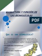 Estructura y Función de Las Biomoléculas