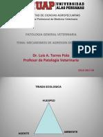 2016-2B PATOLOGIA GENERAL VET TEORIA MECANISMO DE AGRESION DEL AGENTE  UAP Dr Polo + (1)