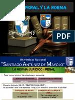 Ley y Norma Penal