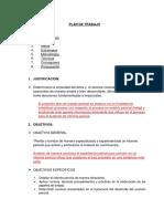 Plan de Trabajo - Informe de Papeles de Trabajo