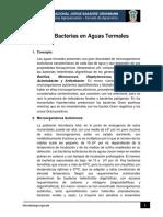 Bacterias en Aguas Termales