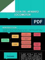 Clase N_ 6 Semiología Del Aparato Locomotor y Cardiovascular 01 de Junio Del 2016