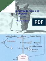 Nutr 1718 bases  e macro.pdf