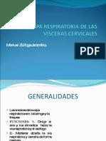 caparespiratoria-100114130325-phpapp02