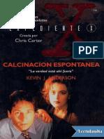 Calcinacion Espontanea - Kevin J. Anderson