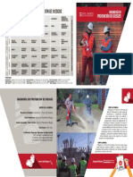 I_3_I-P-Riesgos.pdf