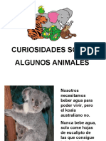 pptcuriosidadesb-100225061626-phpapp01