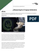 La demanda de marihuana legal en Uruguay desborda la oferta | Blog Mundo Global | EL PAÍS