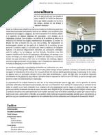 Historia de La Escultura .pdf