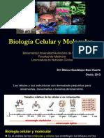 1. Introducción a La Biología Celular y Molecular
