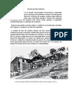 Brasil Um País Violento