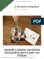 ¿Cómo Limpiar Una Pluma Estilográfica_ - El Blog de Iguana Sell