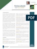 3_guia_practicas_laborales.pdf