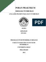 96177836-ANALISIS-PIGMEN.docx