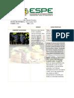 Tarea 6 2323 Enologia Ficha3 4 Merlot Sauvignon Blanc