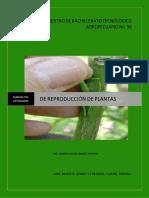 1. Manual de Reproduccion de Plantas