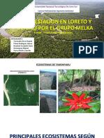 Deforestacion en Loreto y Ucayali Por El Grupo Melka