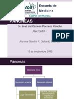 pancreas-151204062330-lva1-app6891.pdf