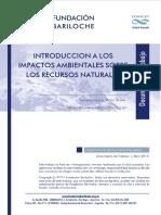 Introduccion a Los Impactos Ambientales Vb 2015.Docx1
